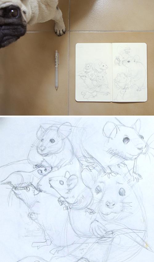Boceto raton estudio animal dibujo ilustración infantil